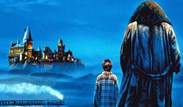 Harry Potter Filminde Rol Almamış 6 Harry Potter Karakteri